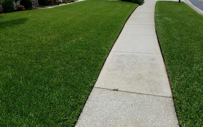 Lawn Care Holiday Fl